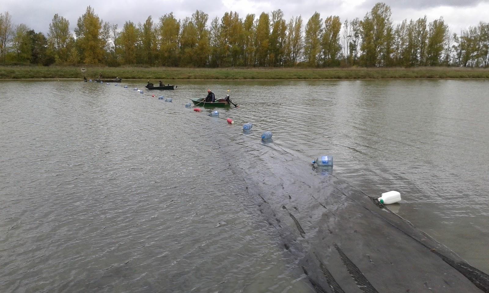 La pêche payante à lobne le forum