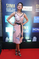 Actress Pranitha Subhash Pos in Short Dress at SIIMA Short Film Awards 2017 .COM 0008.JPG