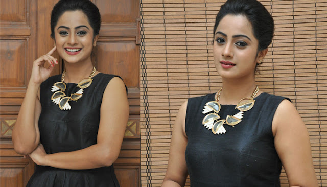 Namitha pramod at chuttalabbayi audio launch