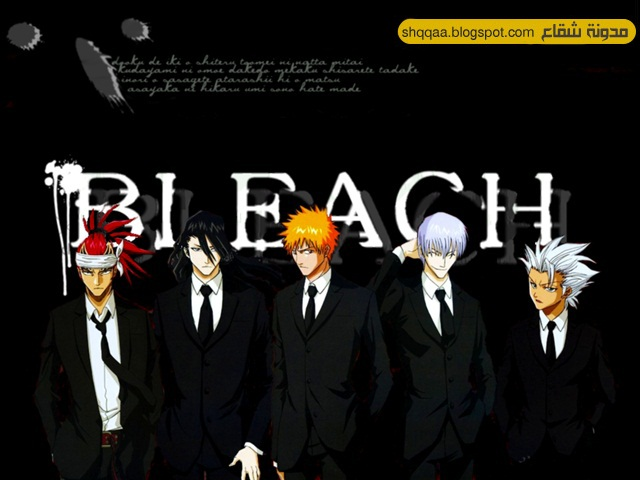 bleach 366 vostfr