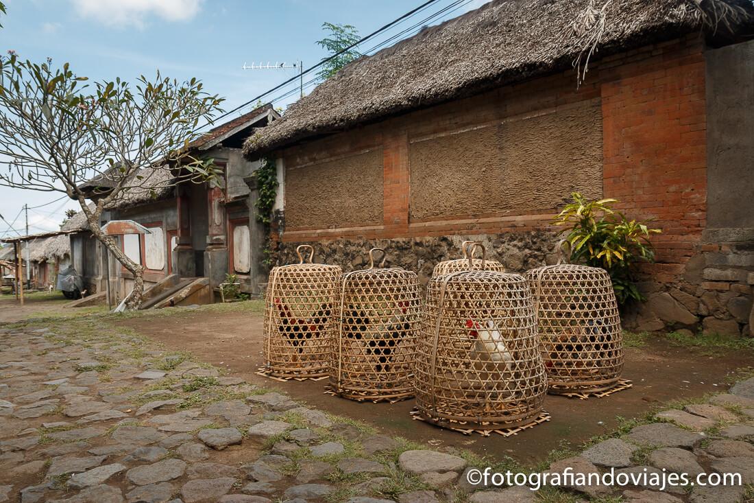 Tenganan en Bali