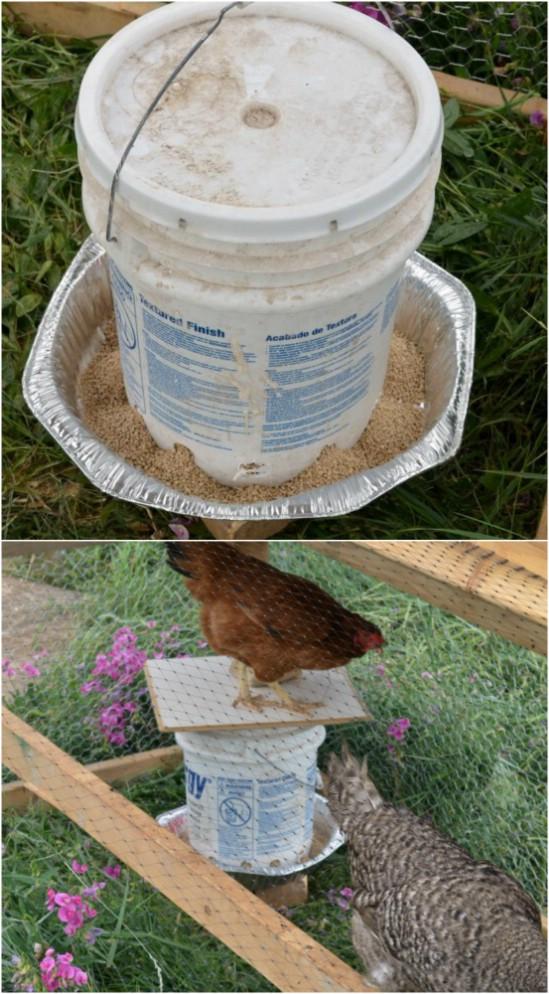 3-chicken-feeder 15 DIY Genius Project Ideas For Repurposing Old Gallon Buckets Interior