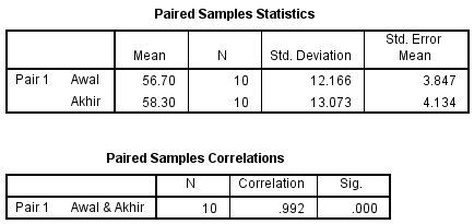 hasil output 1 spss statistika