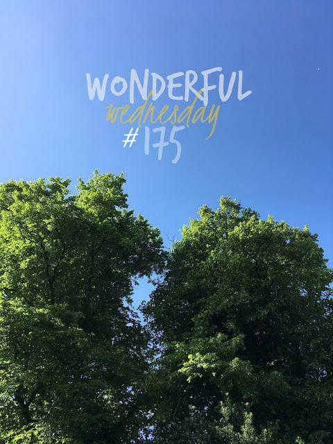 Wonderful Wednesday #175