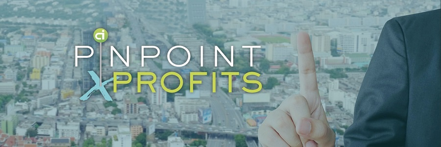 Pinpoint Profits