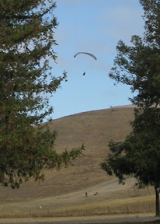 Paraglider near Sandy Wool Lake, Ed Levin County Park, Santa Clara County, California