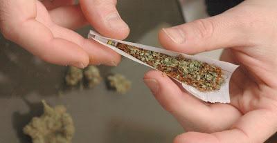 Kannabis Haju