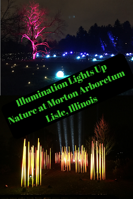 Illumination Lights Up  Nature at Morton Arboretum Lisle, Illinois