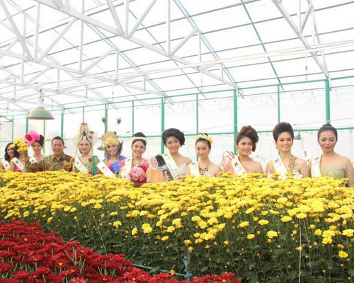 Tinuku.com Travel Tomohon International Flower Festival brings folk feast of horticultural traditions on slopes of Lokon volcano