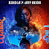 Ex-BB Naija Housemate Bisola Drops New Single