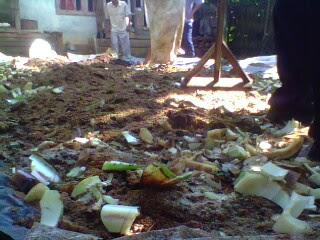Proses Pengolahan limbah hasil panen menjadi pupuk organik