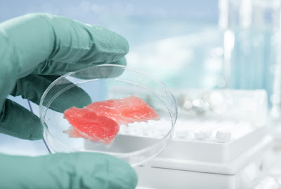A piece of meat in a petri dish.