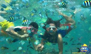 tidung underwater