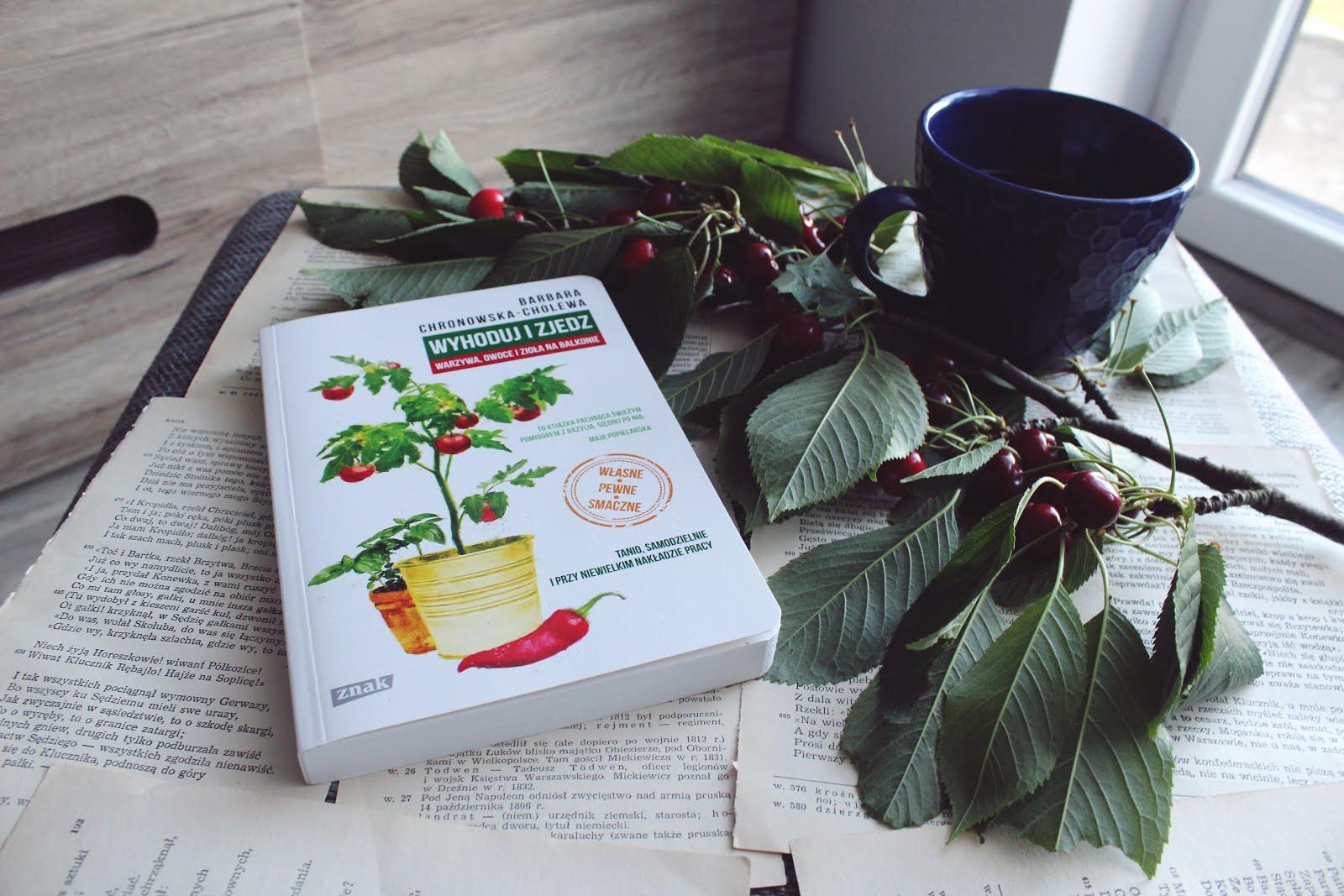 uprawa warzyw i owoców na balkonie
