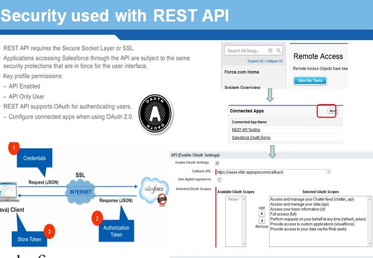 Security used with REST API | Salesforce Knowledge