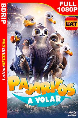 Pajaritos a Volar (2019) Latino FULL HD BDRIP 1080P ()