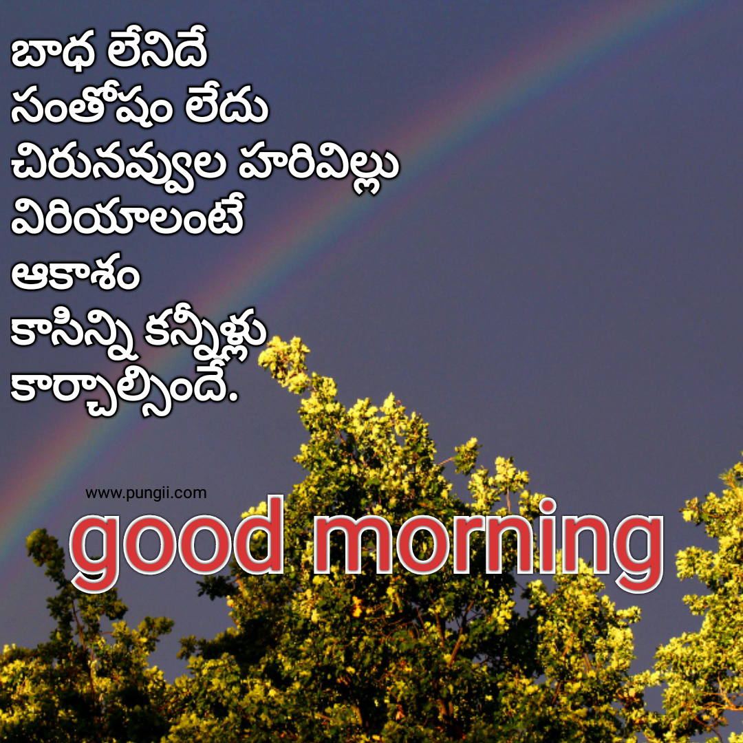 fresh good morning