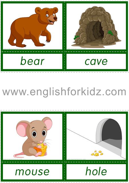 Animal homes and habitats flashcards for ESL students