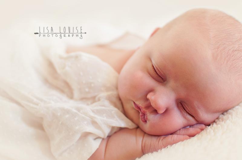 NH Newborn Photographer - Lisa Louise Photography