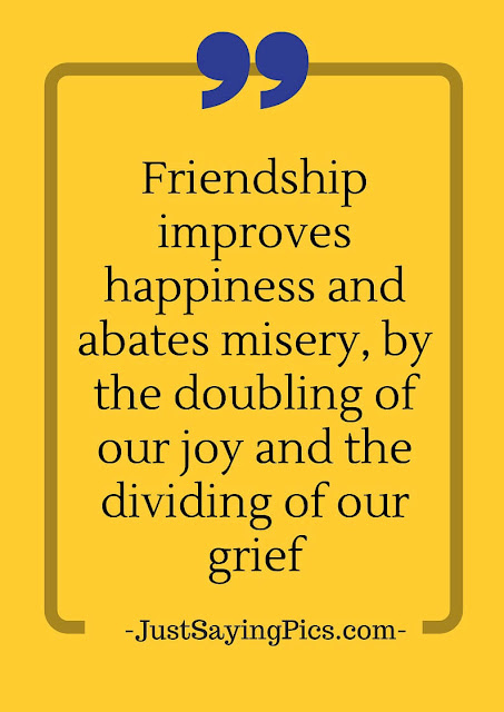 friendship-quotes-friendship-improves-happiness-abates-misery-by-doubling-the-joy-and-dividing-our-grief