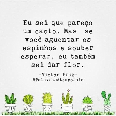 5 Frases Que Definem Meu Pensamento Blog Da Maria Oliveira