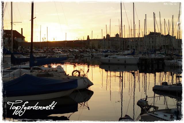 Yachthafen Triest am Abend