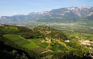 A farm and winery in Trentino-Alto Adige