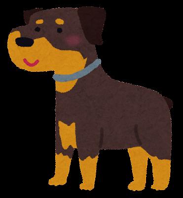 ロットワイラーのイラスト(犬)
