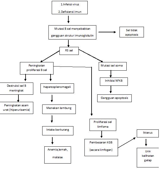 Patofisiologi limfoma hodgkin