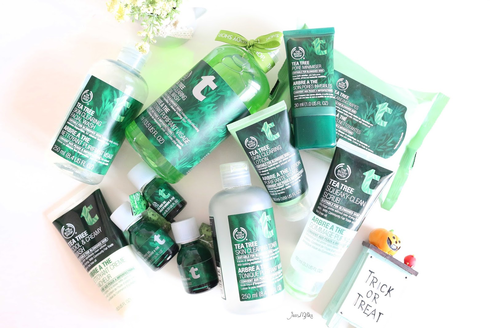 the body shop, body shop, body shop tea tree, tea tree, jerawat, acne, oily skin, skin care, beauty blog