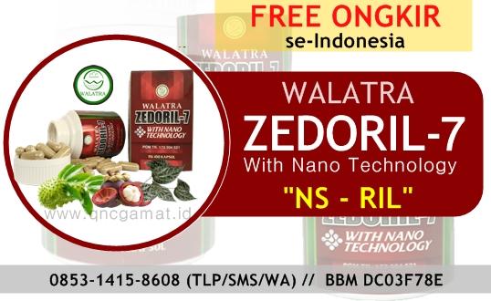 Zedoril 7 - Tumpaskan Masalah Kanker Dan Tumor