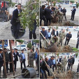 Hizan Belediyesi Ağaç Dikimine Devam Ediyor
