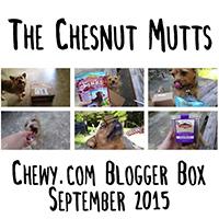 Chewy.com Blogger Box September 2015