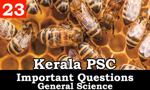 Kerala PSC - Important and Expected General Science Questions - 23