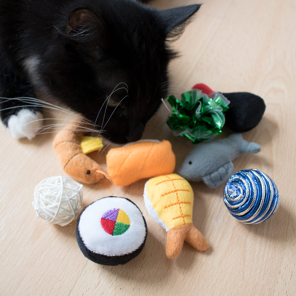 Aliexpress.com : Buy 10Pcs Colorful Cat Toy Ball Interactive Cat Toys Play Chewing Rattle