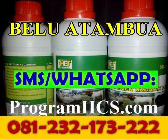 Jual SOC HCS Belu Atambua