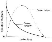force velocity curve explosive exercises