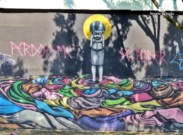 Close-up do Grafite Perdoe-me se puder - Vila Mariana - São Paulo