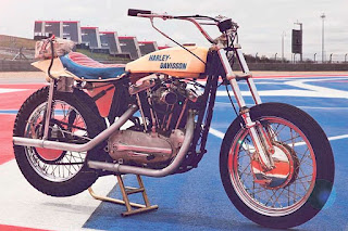evel knievel sportster
