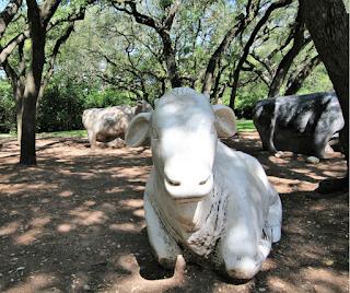 arboretum austin cow sculptures