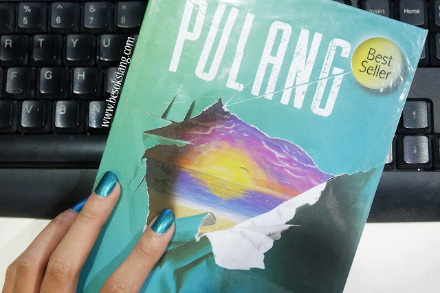 review-novel-pulang-tere-liye