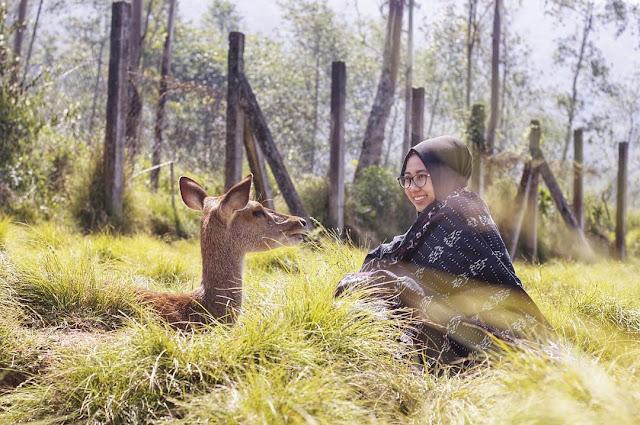 Percutian Melancong Tempat Menarik di Bandung Ranca Uncas Rancabali Ciwidey