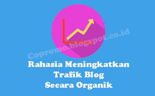 cara meningkatkan traffic blog secara organik