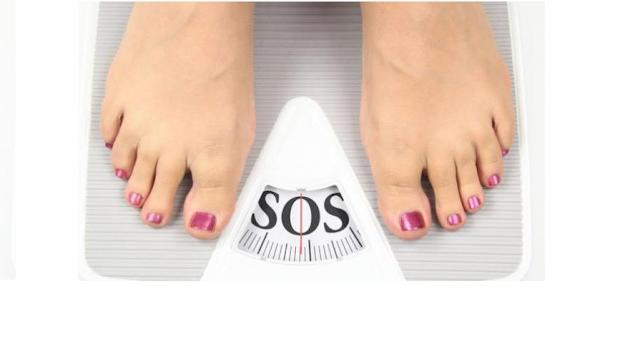 program menurunkan berat badan