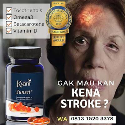 Jual Produk Kesehatan ASLI Kyani Nitro Xtreme Kyani Sunrise Kyani Sunset di Kota Jakarta Barat Hub 081315203378