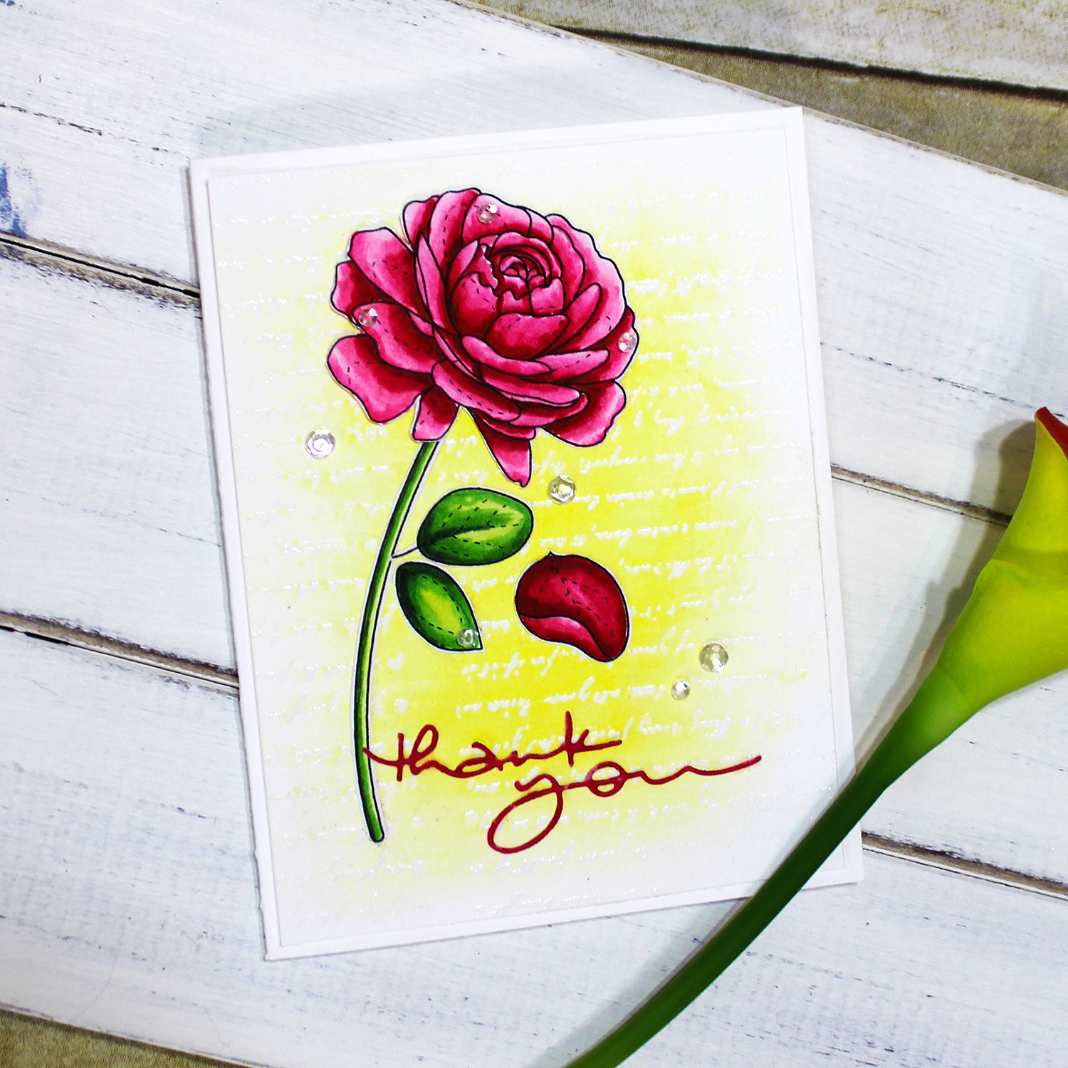 Simon Says Stamp more spring flowers card copic beauty and the beast