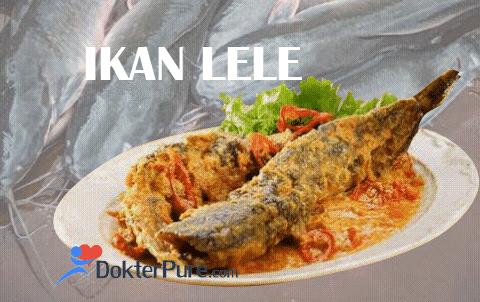 Berbahaya atau Berkhasiat Makan Ikan Lele