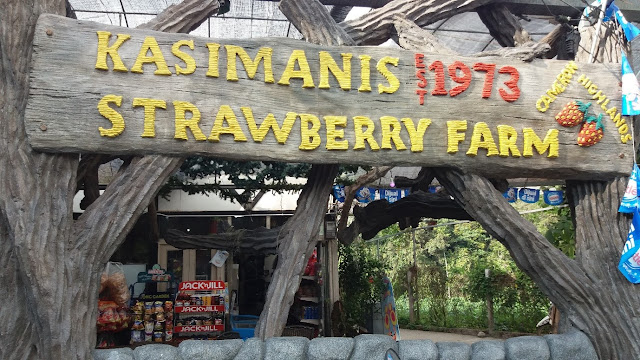 Kasimanis Strawberry Farm
