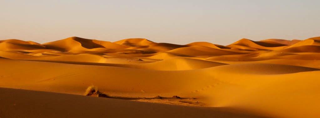 Panorámica del desierto del Sahara