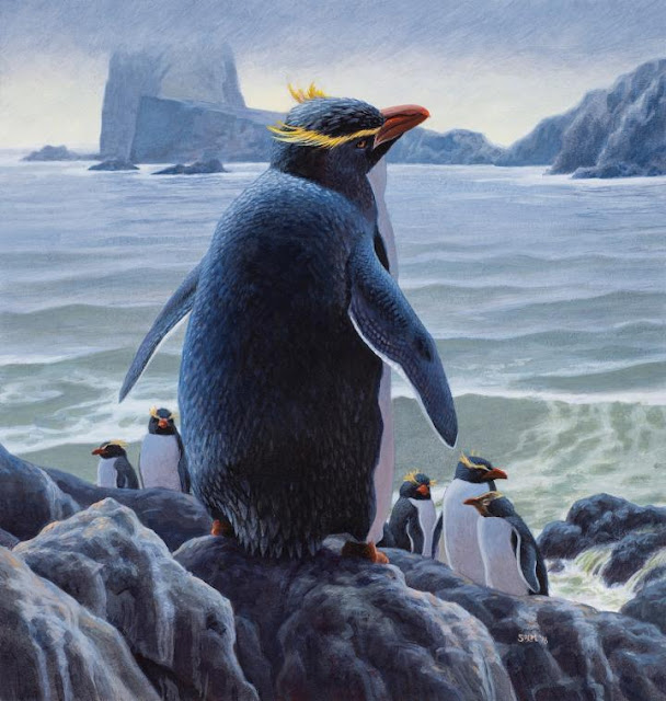DNA provides insights into penguin evolution and reveals two new extinct penguins